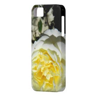Schöne weiße Rose der Blumen Etui Fürs iPhone 5