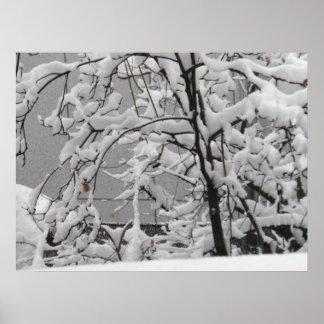 Schöne Winter-Szene Poster