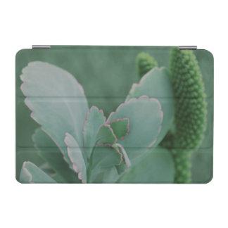 Schöne Wüsten-Pflanzen-Kunst-Fotografie iPad Mini Hülle