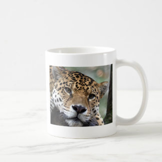 Schöner Amazonas-Jaguar Kaffeetasse