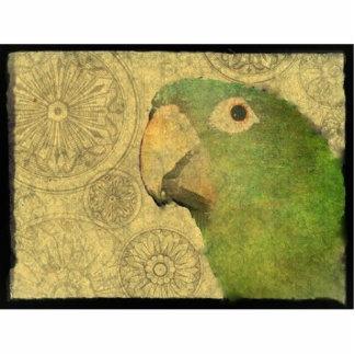 Schöner blauer Krone Conure Papagei Fotoskulptur Magnet