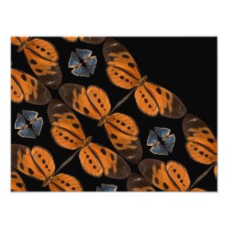 Schöner blauer u. orange Schmetterlings-Foto-Druck Fotodruck
