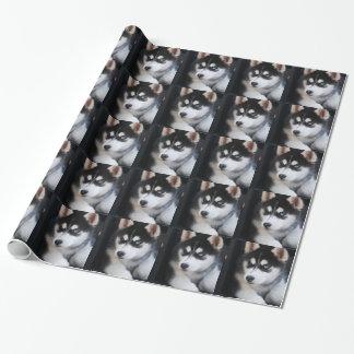 Schöner blaues Augen-sibirischer Husky 2 Geschenkpapier