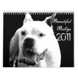 Schöner Bullys 2011 Hundekalender Wandkalender
