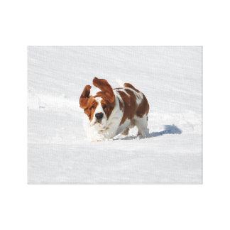 Schöner Dachshund-Jagdhund im Schnee auf Leinwand