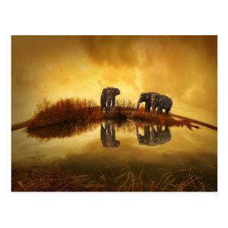 schöner Elefant Thailand-Sonnenuntergang Postkarte