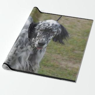 Schöner englischer Setzer-Hund Geschenkpapier