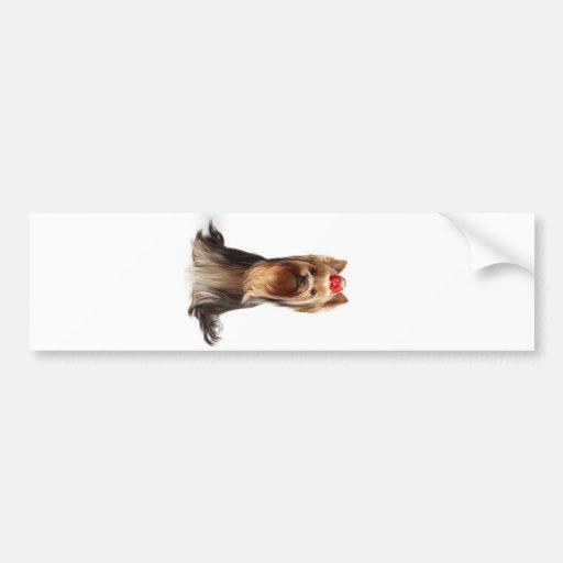 Schöner entzückender Hund Auto Sticker