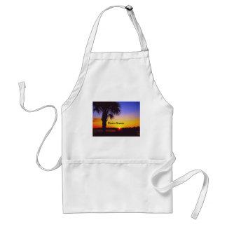 Schöner Florida-Sonnenaufgang Schürze