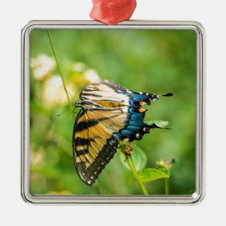 Schöner gelber Schmetterling Silbernes Ornament