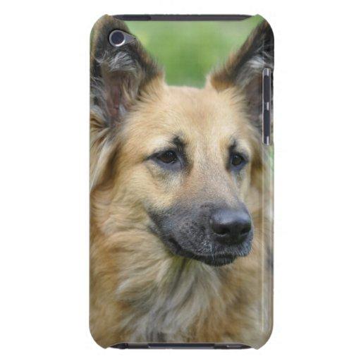 Schöner Hund iPod Case-Mate Case