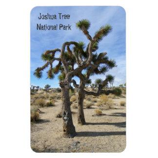 Schöner Joshua-Baum-Prämien-Magnet! Magnet