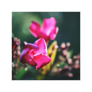 Schöner Kirschblüten-Leinwand-Druck Leinwanddruck