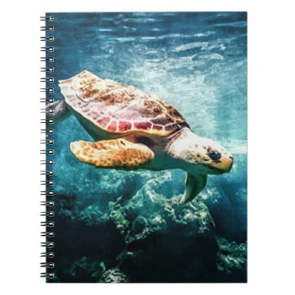 Schöner Meeresschildkröte-Ozean-Unterwasserbild Notizblock
