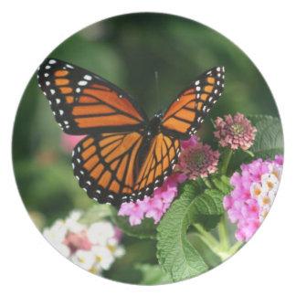 Schöner Monarchfalter Melaminteller