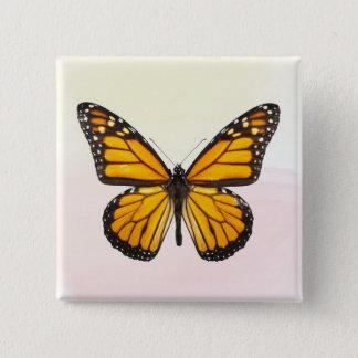 Schöner Monarchfalter-orange Schwarzes Quadratischer Button 5,1 Cm