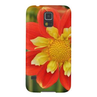 Schöner orange Dahliedruck Samsung S5 Cover