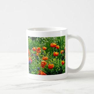 Schöner orange Mohnblumen-Blumendruck Kaffeetasse