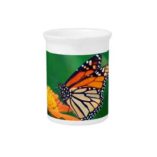 Schöner orange Monarchfalter Krug