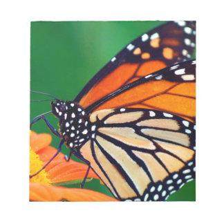 Schöner orange Monarchfalter Notizblock