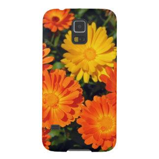 Schöner orange Zinnia-Blumengarten Samsung S5 Cover