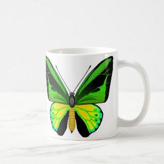Schöner Ornithoptera Schmetterling Kaffeetasse