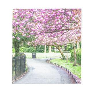 Schöner Park während des Frühlinges Notizblock
