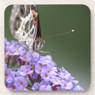 Schöner Schmetterling auf Schmetterlingsbusch Getränkeuntersetzer