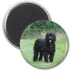Schöner schwarzer briard HundeKühlschrankmagnet, Runder Magnet 5,1 Cm