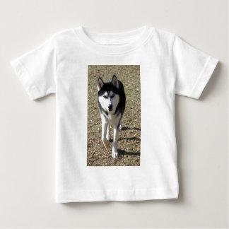 Schöner sibirischer Husky! Baby T-shirt