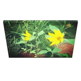 Schöner Sonnenblume-Foto-Druck Leinwanddruck