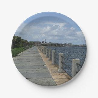 Schöner Ufergegend-Gehweg Pappteller