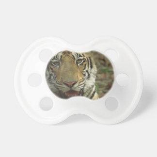 Schöner und lächelnder Tiger Schnuller