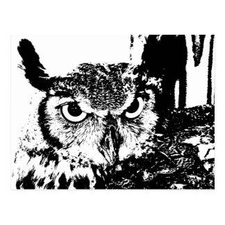 Schöner Virginia-Uhu-schwarze u. weiße Grafik Postkarte