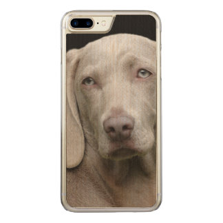 Schöner Weimaraner Jagd-Hund Carved iPhone 8 Plus/7 Plus Hülle