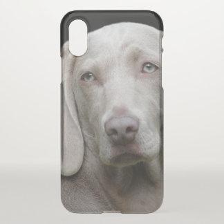 Schöner Weimaraner Jagd-Hund iPhone X Hülle