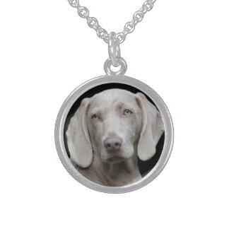 Schöner Weimaraner Jagd-Hund Sterling Silberkette