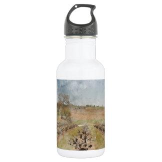 Schöner Weinberg im Frühjahr Edelstahlflasche