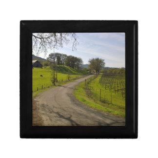 Schöner Weinberg in Napa Valley Kalifornien Schmuckschachtel