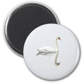 Schöner weißer Schwan im Wasserspiegelbild Runder Magnet 5,1 Cm