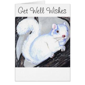 Schönes Albino-Eichhörnchen Karte