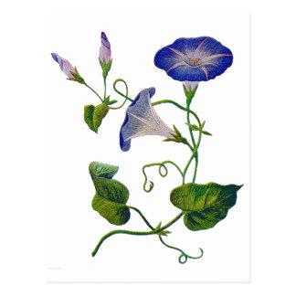 Schönes Blau gestickte Winden Postkarte