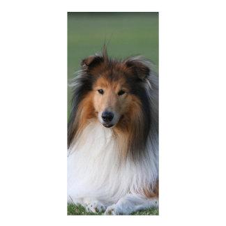 Schönes Colliehundeporträt-Lesezeichen, Werbekarte