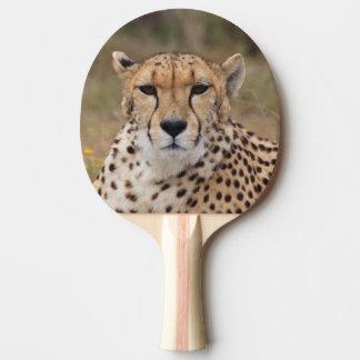 Schönes Gepardporträt Tischtennis Schläger