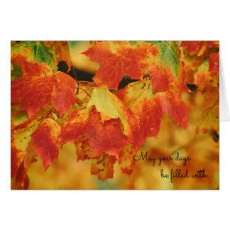 Schönes helles orange Herbst-Blätter auf Baum Karte