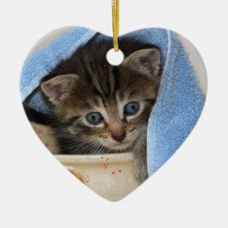 schönes, junges Hauskätzchen schaut aus Gefäß, Weihnachtsornament