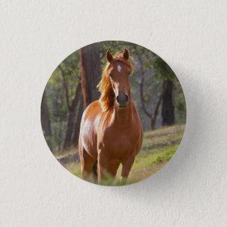 Schönes KastanienpferdeFotoporträt, Geschenk Runder Button 3,2 Cm