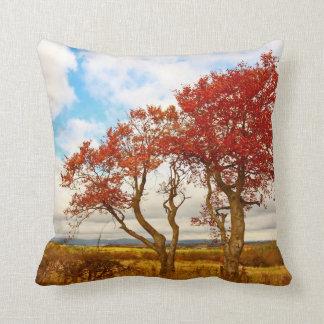 Schönes Kissen der herbstlichen Bäume