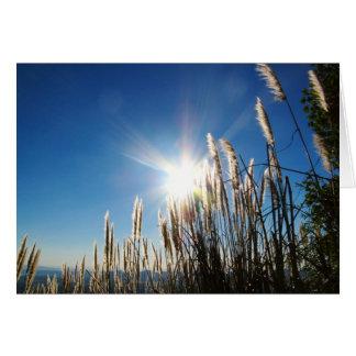 Schönes Morgen-Gras Notecard Karte