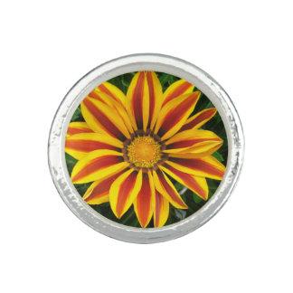 Schönes orange Sun-Blumen-Foto Ring